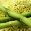 Bath salt with green bamboo — Stock Photo #4524637