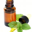 Peppermint oil — Stock Photo #4536116