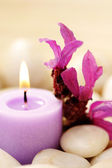 Candle and lavender — Stock Photo