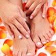 Beautiful feet — Stock Photo