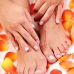 Beautiful feet — Stock Photo