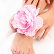 Beautiful feet and hands — Stock Photo