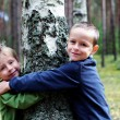 Royalty-Free Stock Photo: Boys and birch tree
