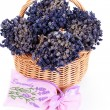 Royalty-Free Stock Photo: Basket with lavender