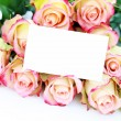 Bunch of roses — Stockfoto