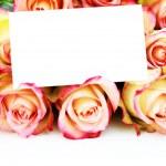 bos van rozen — Stockfoto