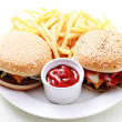 Cheeseburger and french fries — Stock Photo #4577501
