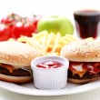 Cheeseburger and french fries — Stockfoto