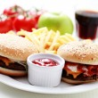 Cheeseburger and french fries — Stock Photo #4577506