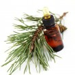 Fir tree essential oil — Stock Photo #4577668