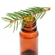 Fir tree essential oil — Stock Photo #4577693