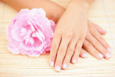 Beautiful female hands — Stock Photo