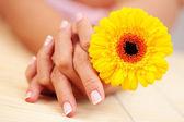 красивые женские руки — Стоковое фото