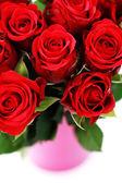 Veel van rozen — Stockfoto