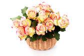 Basket full of roses — Stock Photo