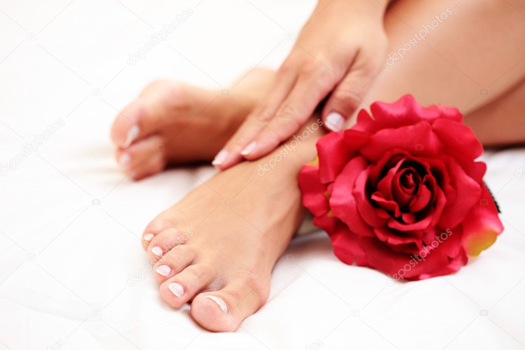 Sexy female feet and hands with red rose on white duvet  Stock Photo #4572395