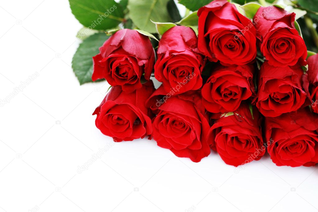 Bunch of beautiful roses - flowers and plants — Stock Photo #4576068