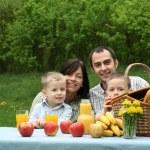 Outdoor picnic — Stock Photo #4587245