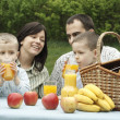 Outdoor picnic — Stock Photo