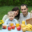 picnic all'aperto — Foto Stock