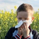 Allergy — Stock Photo #4587520