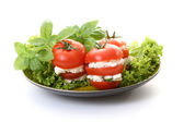Tomatoes appetizer — Stock Photo