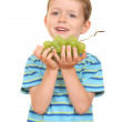 Boy and grapes — Stock Photo #4616694