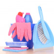Cleaning house — Stock Photo
