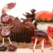 Autumn decoration — Stock Photo #4655733