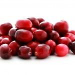 Cranberries — Stock Photo #4762110