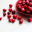 Cranberries — Stock Photo #4762468