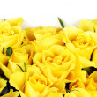 Royalty-Free Stock Photo: Yellow roses