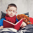 Reading book — Stock Photo #5039148