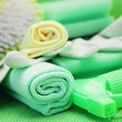 Cleaning supplies — Stock Photo #5099181