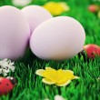 Easter eggs in green - Stock Photo