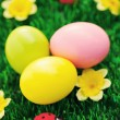 Easter eggs in green — Stock Photo #5218123