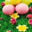 Easter eggs in green — Stock Photo