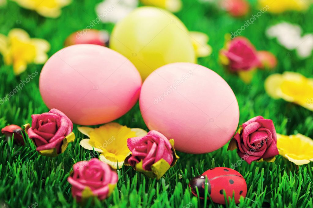 Easter eggs in green grass - food and drink — Stock Photo #5218141