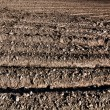 Tillage brown background — Photo