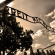 Auschwitz Birkenau camp - Photo