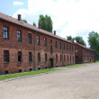 Auschwitz Birkenau concentration camp — Stock Photo #3131901