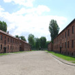 Auschwitz Birkenau concentration camp — Stock Photo #3131911