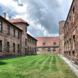 Auschwitz Birkenau concentration camp — Stock Photo #3132037