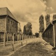 Auschwitz Birkenau camp - Stock Photo