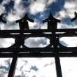 Old gate — Stock Photo #3261443