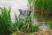 Siatka do przechowywania ryb — Zdjęcie stockowe