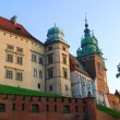Stock Photo: Royal Wawel Castle, Cracow