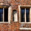 Window of a medieval building — Stock fotografie