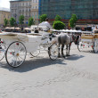 Horse-drawn buggies trot around Krakow - Foto Stock