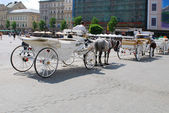 Horse-drawn buggies trot around Krakow — Foto de Stock